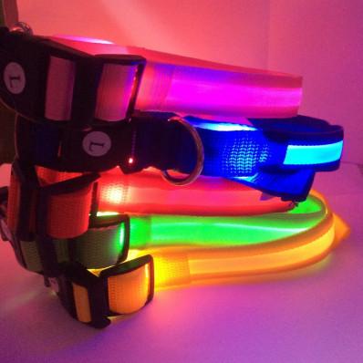 Collier de LED clignotante pour chien et chat vente en ligne